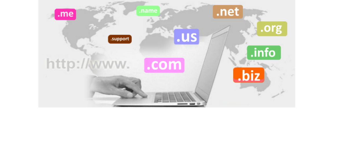 DomainNameRegistration2